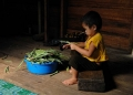 A little Penan boy doing his part by hel...