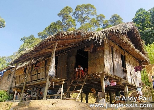 A traditional Semai kampung (village) ho...