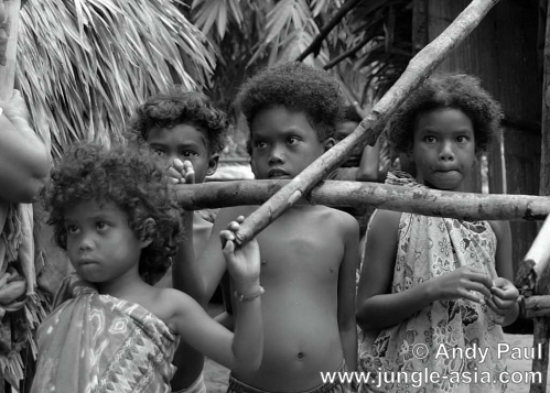 A sub-group of the Negrito, the Jahai tr...