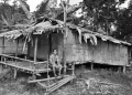 A traditional Temuan house in the interi...