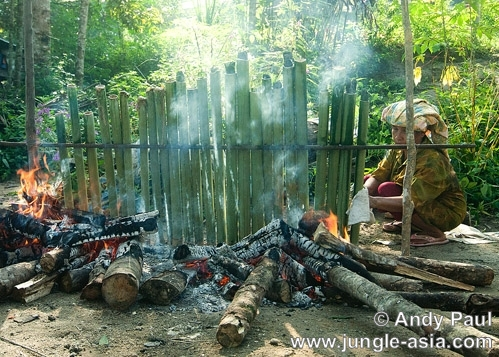 An indigenous Semai preparing 'lemang' o...