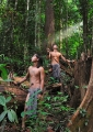 Young Penan hunters in the rainforest. P...