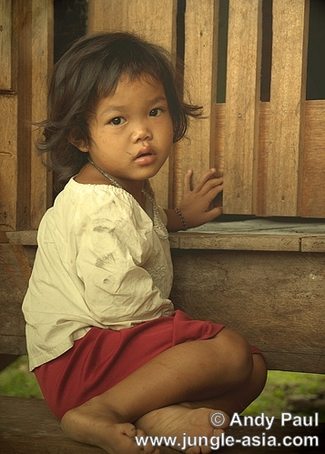 A Penan child from an interior village i...