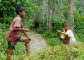 Children being children. Indigenous Sema...