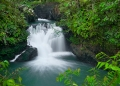 The Table Waterfall in Tawau Hills Natio...