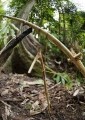 The indigenous Penans use a simple but e...